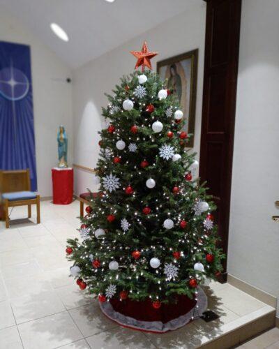 Christmas Transformation-2020 at St. Anthony of Padua Church